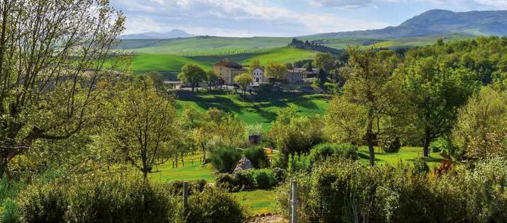 VAL D'ORCIA - i panorami del Rinascimento